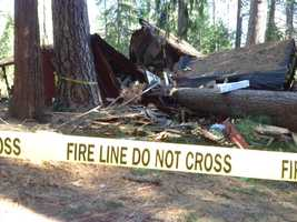 The tree, which fell right down the middle of the home, ignited a small fire after landing on a wood stove.