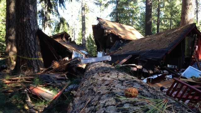 Tree smashes house Nevada County