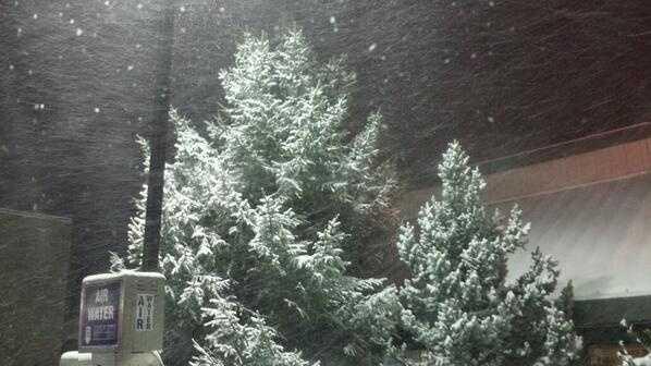 Low snow image.jpg