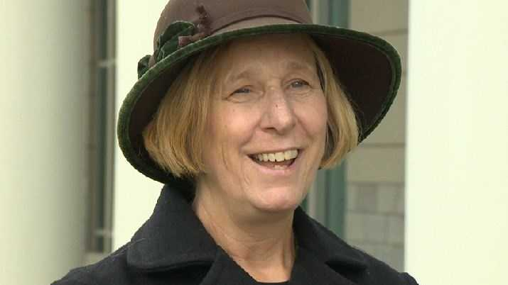 Peace activist Cindy Sheehan of Vacaville has announced she is a candidate for governor in 2014.