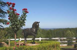A horse lover will feel right at home with all the amenities on these grounds.