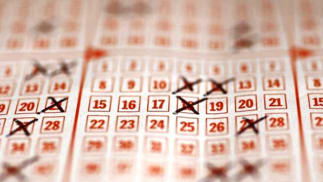 Lotto blurb.jpg