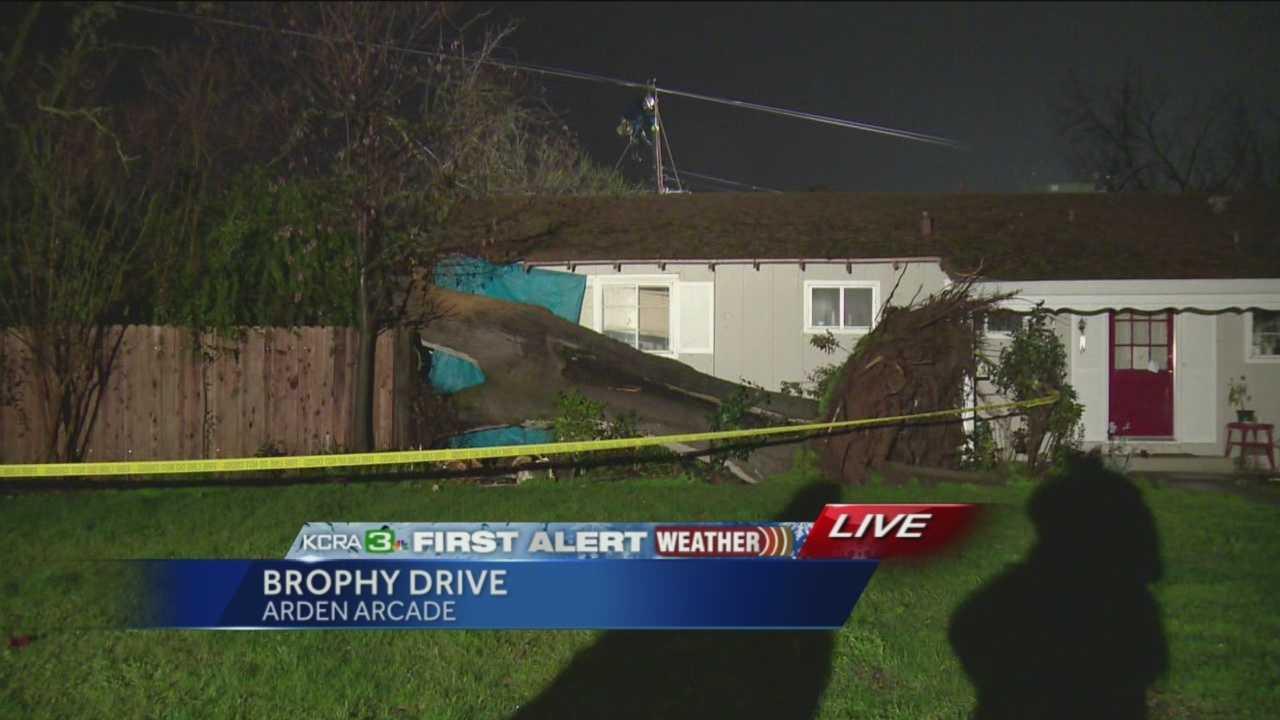 Oak tree comes crashing down, clips Arden home