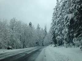 Snow in the Sierra