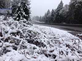 Snowfall in Camino