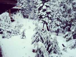 Snowfall in Arnold