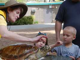 What: Earth Fest: Party for the PlanetWhere: Sacramento ZooWhen: Sat 9am-4pmClick here for more information on this event.