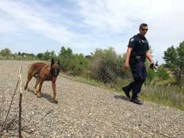 A police dog helped with Friday's search (May 2, 2014).