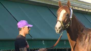 3. The California-bred horse was named for his white markings, called chrome in the horse world.