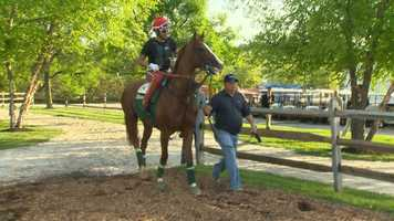 10. One of California Chrome's owners, Steve Coburn, says that his horse loves Mrs. Pastures horse cookies and will not eat any other treat.