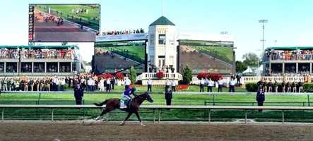 As California Chrome prepares to go for the Triple Crown on Saturday at the Belmont Stakes, here are 20 things you may not know about the winning horse.