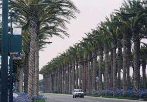 No. 8: Anaheim, Calif.