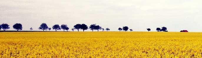 Panorama - 3rd place: © BIRSAN IONUT LIVIU - Iasi, Romania