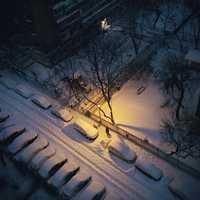 Seasons - 2nd place: © DRAGOS BARDAC - Bucharest, Romania
