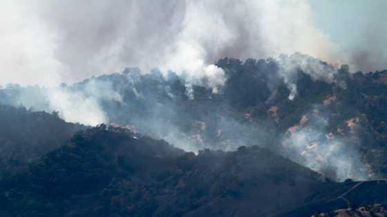 Monticello Fire 2 070614.jpg