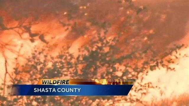 Shasta County wildfire.jpg