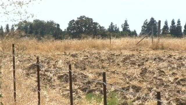 Elk Grove subdivision land (July 23, 2014)