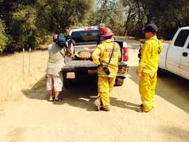Firefighters rescue Abe the tortoise from the Sand Fire. (July 27, 2014)