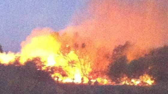 Riverbank fire u local.jpg