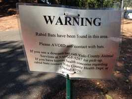 A warning sign posted near the playground behind the Davis Art Center after the discovery of rabid bats. (Aug. 20, 2014)
