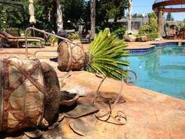 Potted plants damaged at a home on White Cliff Circle in Napa. (Aug. 24, 2014)