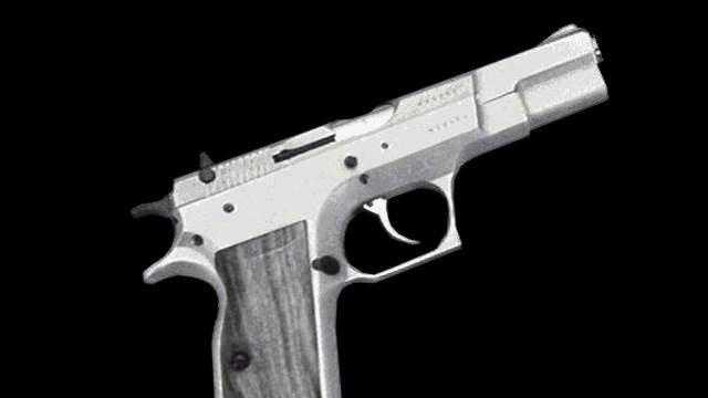 Pistol, Gun Generic - 15001458