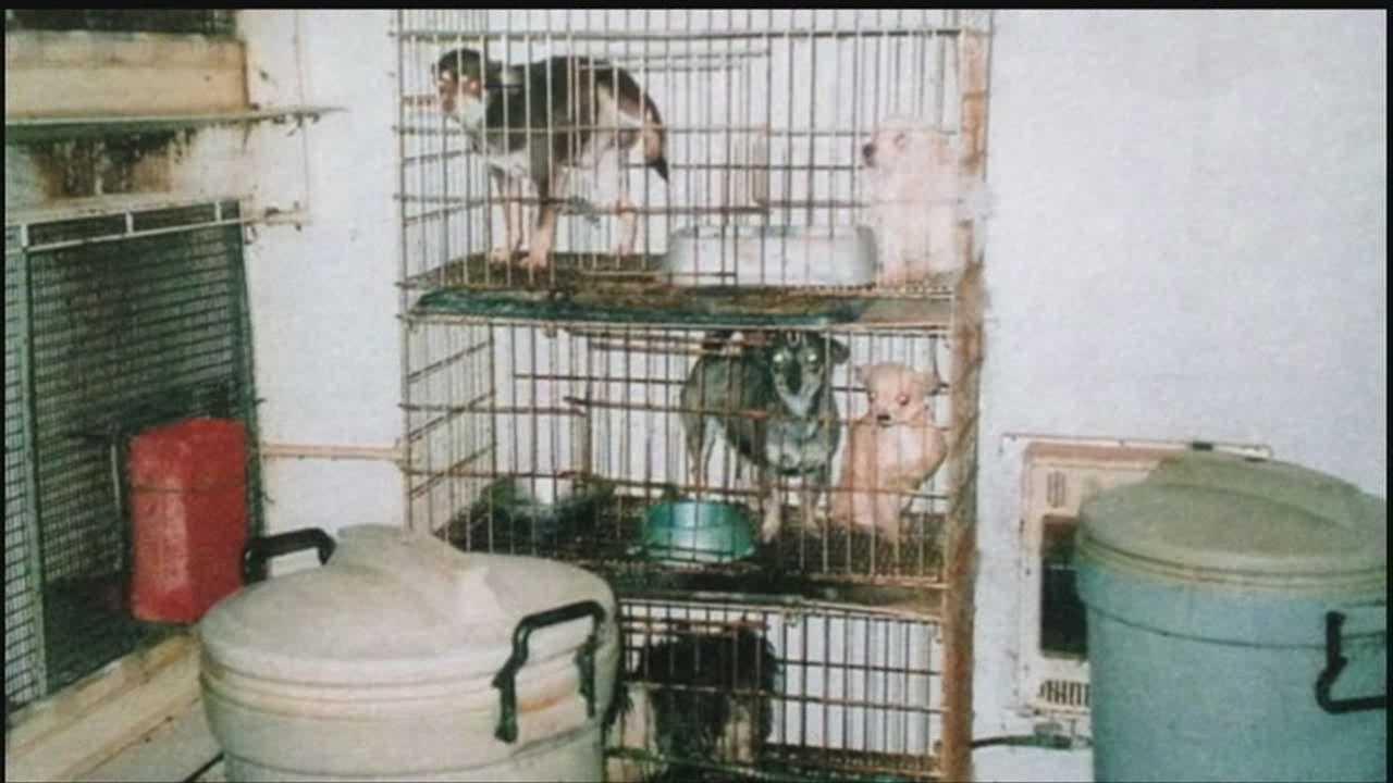 Former dog breeder sentenced for animal neglect