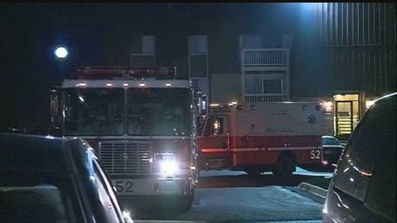 img-Family dog alerts owners to carbon monoxide leak in apartment building