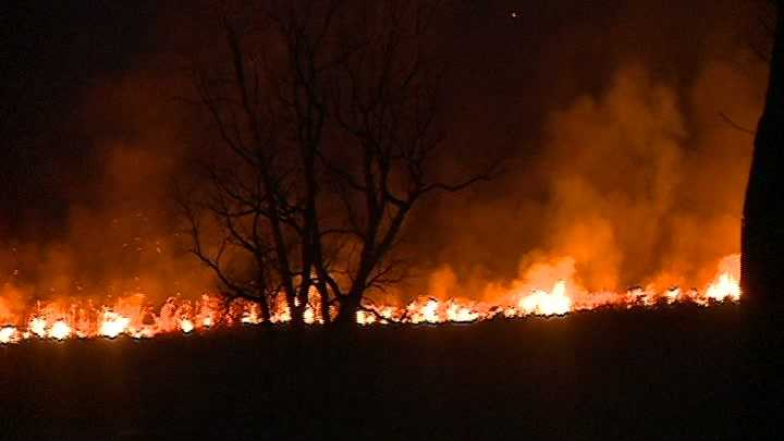 BRUSH FIRE_12.jpg