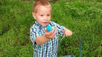6. AidenA uLocal viewer sent us this photo of Aiden hunting eggs at Grandma's on Easter Sunday in Howe.