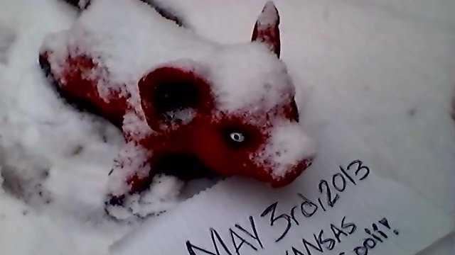 May 3rd Snow with Razorback.jpg