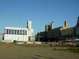 Riceland Foods is the world's largest marketer of rice processing more than 125 million bushels of grain a year. Their home office is located in Stuttgart, Arkansas and their products are not only sold across the nation but also in more than 75 foreign countries, according to Riceland.com.