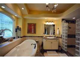 The master bathroom has a jacuzzi bathtub and a standup shower.