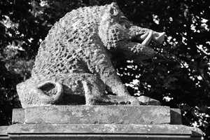 A stone razorback from Charlecote Park, a 16th-century estate near Stratford-upon-Avon in England.