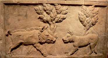 This is an ancient Roman relief of a wild boar fighting a hunting dog. Looks a lot like our mascot logo, doesn't it?