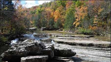 10-31 Fall Foliage pic