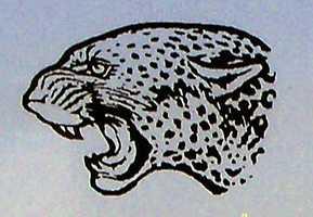 3Jaguars - McCrory, LISA Academy, LISA Academy North.