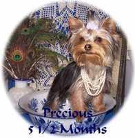 Precious in pearls