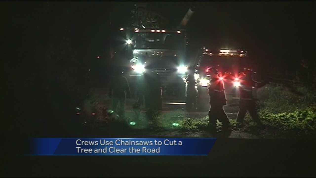 Storms Cause Tree to Fall on Power lines