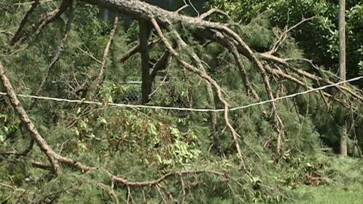 OG&E clears power line from yard after three days
