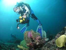 Scuba Diving: Equipment and lessons cost thousands of dollars, according to Bloomberg. That doesn't include travel costs.