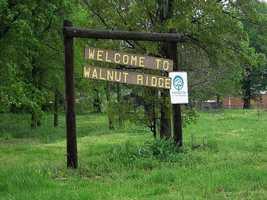 10. Walnut Ridge