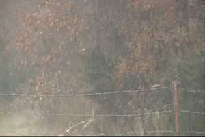 Snow falling in McDonald County Sunday.