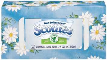 #15 Scotties
