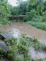 Wesley Flooding
