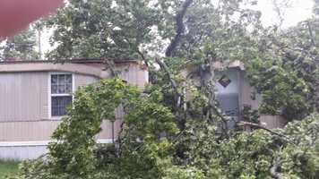 A tree split a house into two on Cravens Road north of Ozark.