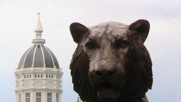 University Of Missouri - Jesse Hall and Tiger - 29968708