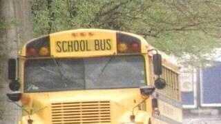 school bus (generic)