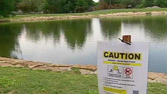 Blue-green algae prompts alert at OP park