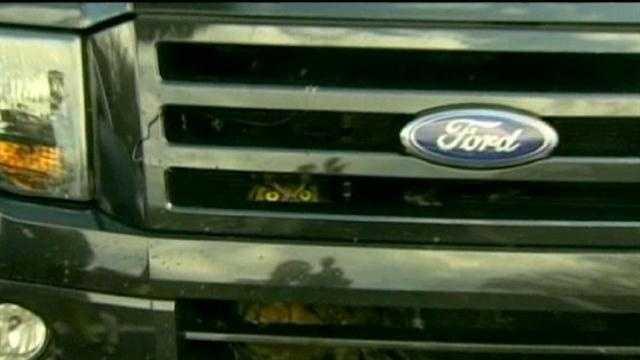 Owl in pickup truck grill